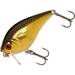 Color_SEXY GOLD SHAD