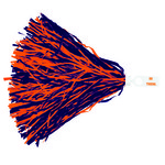 "WinCraft Clemson University 16"" 2-Color Licensed Rooter Pom"