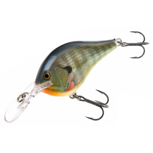 Rapala® DT® 2' Lure