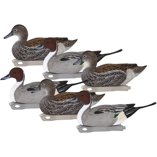 Hard Core 3-D Pintail Duck Decoys 6-Pack