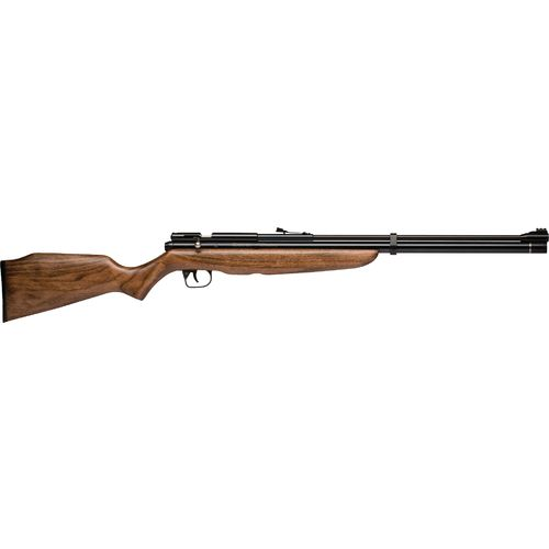 Crosman Benjamin Discovery PCP/CO₂ Air Rifle - view number 3