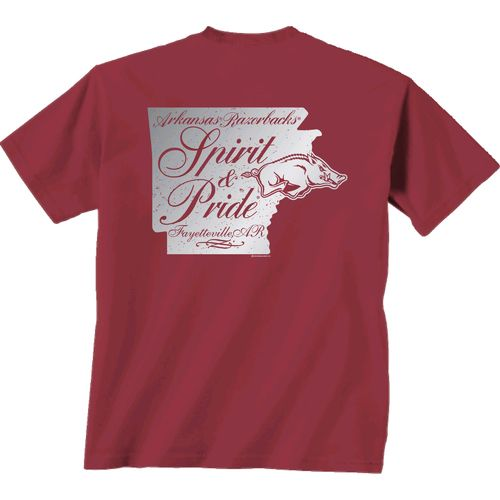 New World Graphics Women's University of Arkansas Silver State Distress T-shirt