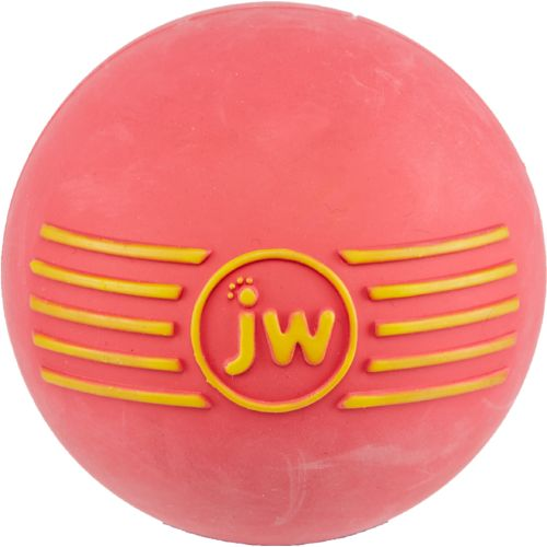 JW Pet® iSqueak Ball Dog Toy