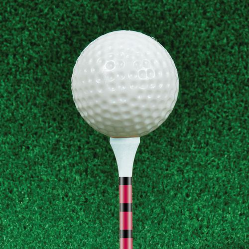 Players Gear 2-1/8 in Height Control Golf Tees 75-Pack