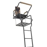 Game Winner® 20' DLX Ladder