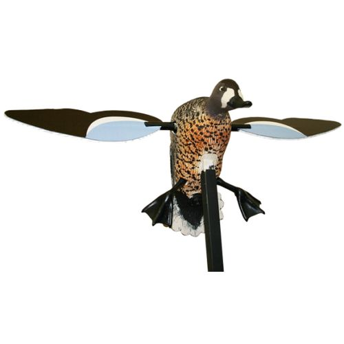 Display product reviews for MOJO Outdoors™ Blue-Winged Teal Decoy