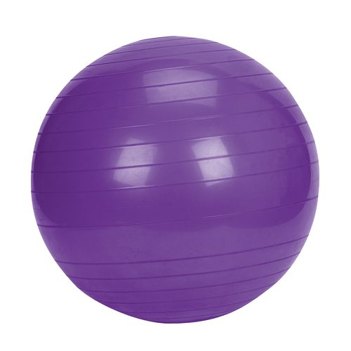 Sunny Health & Fitness 65 cm Exercise Ball