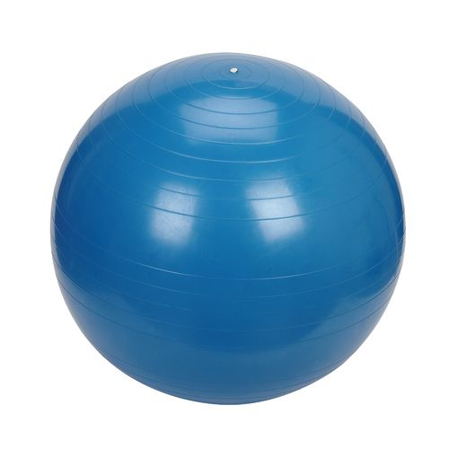 Sunny Health & Fitness 75 cm Exercise Ball