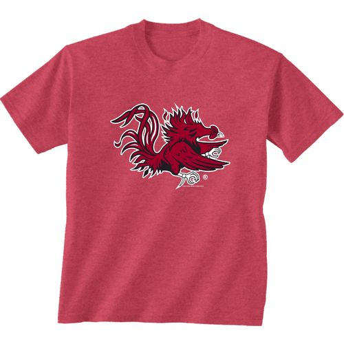 New World Graphics Men's University of South Carolina Alt Graphic T-shirt
