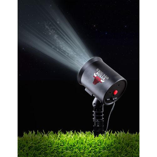 Lite-Imation Chicago Bulls Team Pride Light