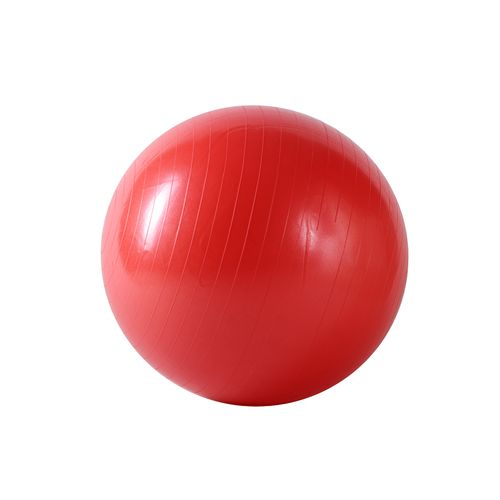 Sunny Health & Fitness 55 cm Antiburst Gym Ball - view number 1
