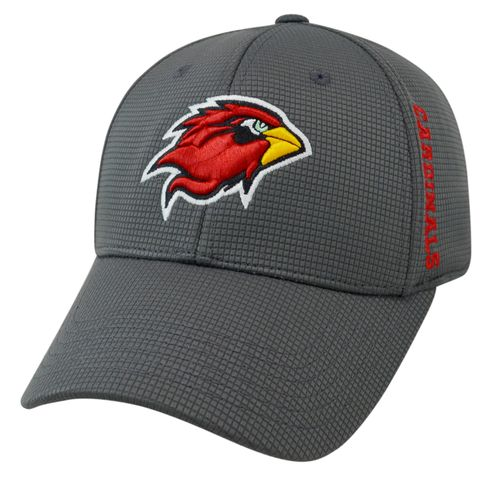 Top of the World Men's Lamar University Booster Plus Cap
