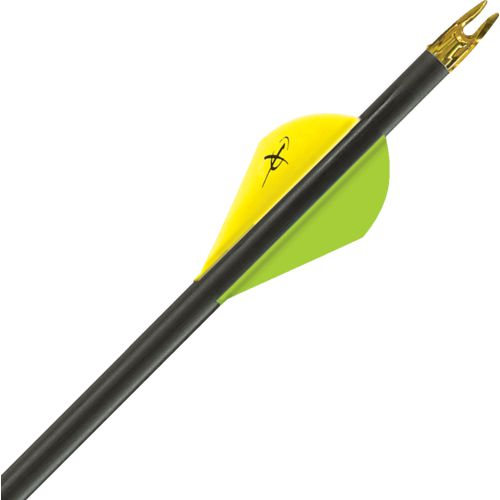 Hunting, Carbon & Wooden Arrows | Academy