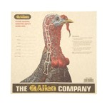 Allen Company Turkey Hunter Shotgun Targets 12-Pack
