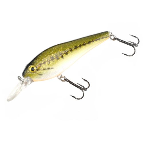 H2o xpress crankbait academy for Academy fishing lures