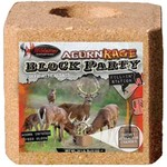 Wildgame Innovations Acorn Rage Block Party 20 lb. Salt Block - view number 1