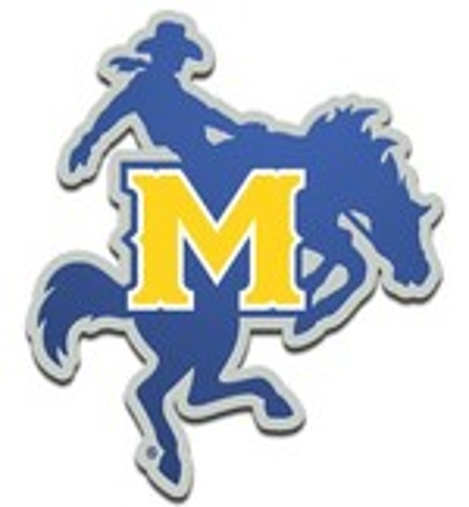 Stockdale McNeese State University Laser-Cut Auto Emblem