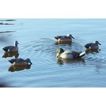MOJO Outdoors™ Rippler Duck Decoy - view number 3