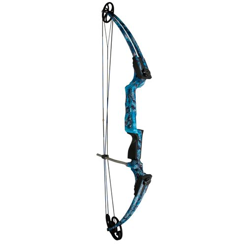 AMS Fish Hawk Bowfishing Compound Bow