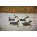 Game Winner® Carver's Edge Series Coot Duck Decoys 6-Pack - view number 5