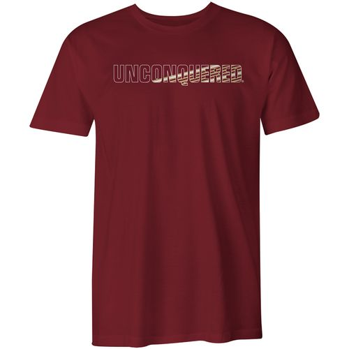 Image One Men's Florida State University Spirit Stripe