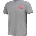 Image One Men's University of Arkansas Comfort Color Distressed Flag T-shirt - view number 3