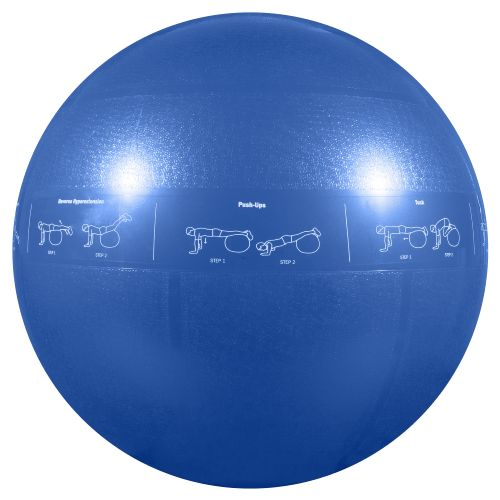 GoFit Adults' 55 cm Professional Grade Stability Ball