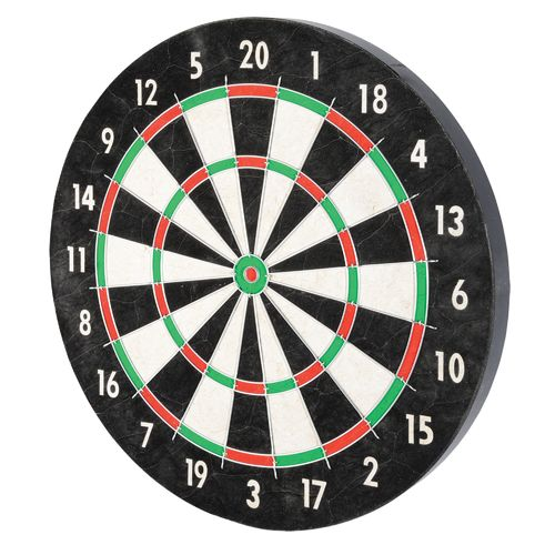 Franklin Pro Wire Bristle Dartboard