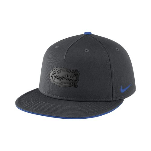 Nike Men's University of Florida ND Energy True Matte Cap - view number 1