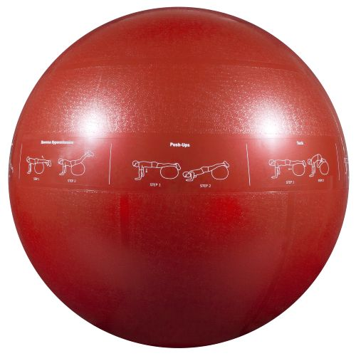 GoFit Adults' 65 cm Professional Grade Stability Ball