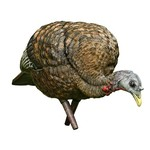 Avian-X LCD Feeder Hen Decoy