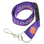 Color_Clemson Tigers