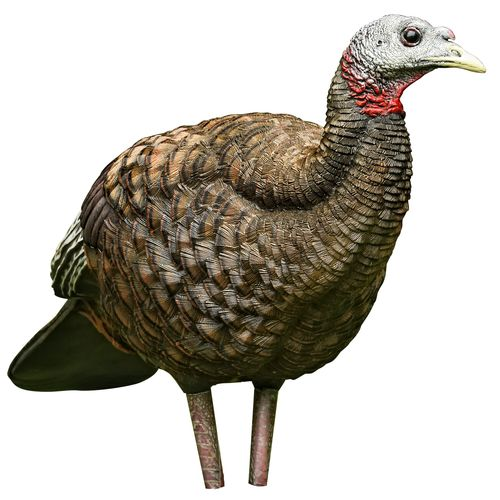 Avian-X LCD Breeder Hen Decoy