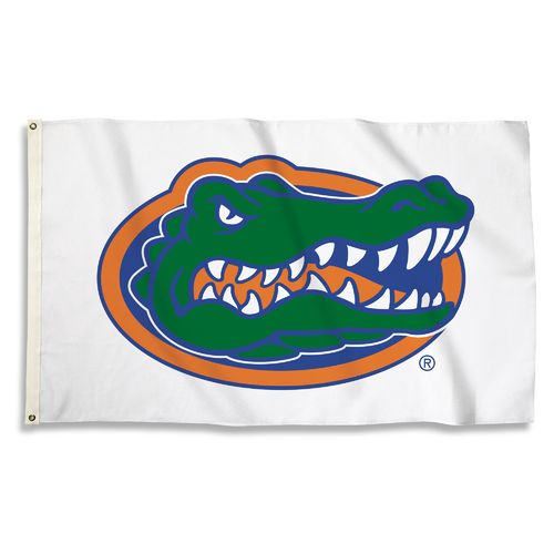 BSI University of Florida 3' x 5' Fan Flag