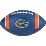 Nike University of Florida Mini Youth Football
