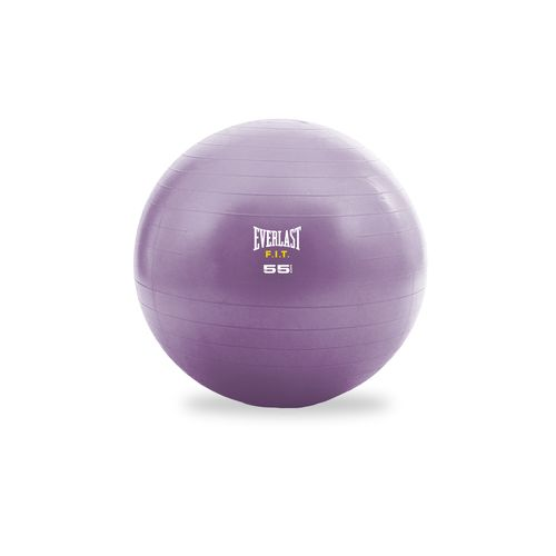 Everlast™ F.I.T. 55 cm Stability Ball and Pump