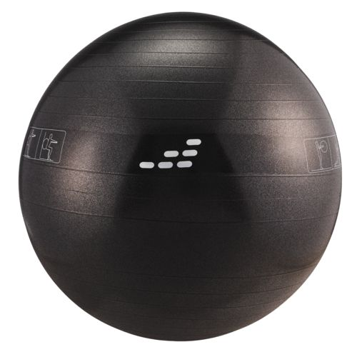 BCG Weighted Stability Ball - view number 3