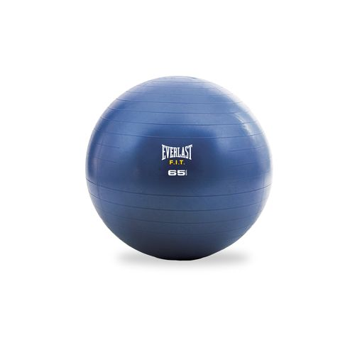 Everlast™ F.I.T. 65 cm Stability Ball and Pump