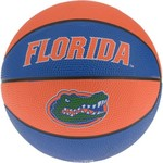 Rawlings® University of Florida Alley Oop Youth Basketball