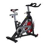 Sunny Health & Fitness SF-B1401 Indoor Exercise Bike