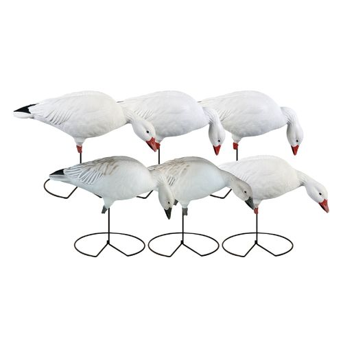 Greenhead Gear® Pro-Grade 3-D Full-Body Snows and Blues Feeder Decoys 6-Pack