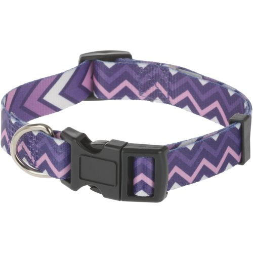Aspen Pet 2-Sided Chevrons Dog Collar