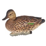 Game Winner® Carver's Edge Series Green Wing Teal Decoys 6-Pack - view number 2