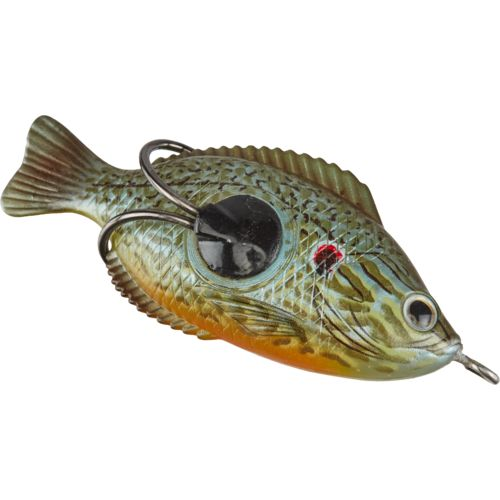 3907098 color pumpkinseed sunfish pumpkinseed sunfish