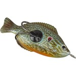 "H2O XPRESS™ 3-1/2"" Hollow Body Bream"