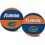 Jarden Sports Licensing University of Florida Alley-oop Mini Basketball