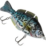 Color_CHROME COPPERNOSE CRAPPIE