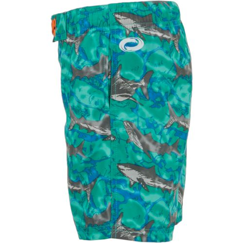 O'Rageous Boys' Sketchy Shark Printed Boardshorts - view number 4