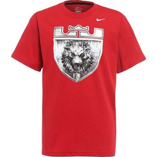 Academy - Nike Boysu0026#39; LeBron James Lion Logo T-shirt
