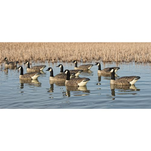 Avian-X Topflight Honker Floaters Canadian Geese Decoys 4-Pack